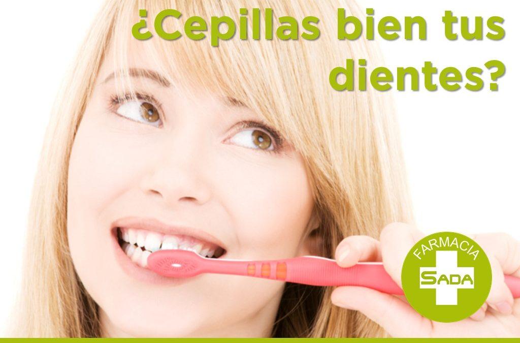 ¿Cepillas bien tus dientes?