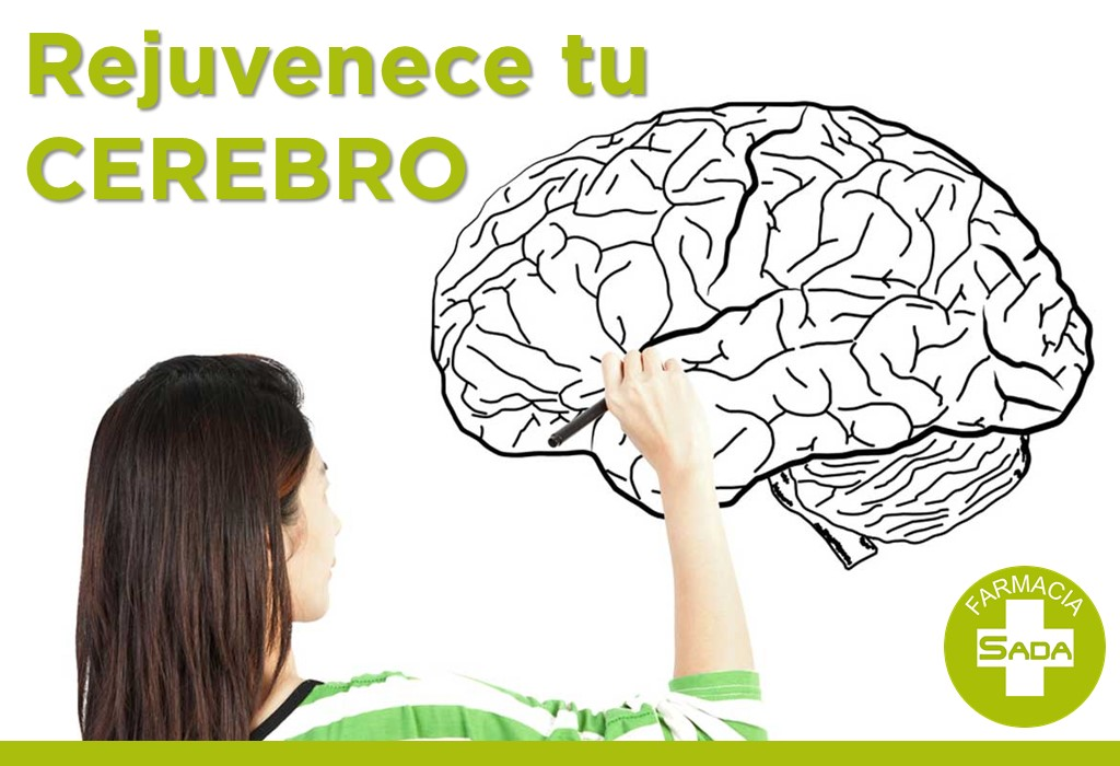 Rejuvenece tu Cerebro